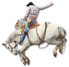 A rodeo rider